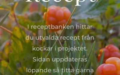 Laplandculinary