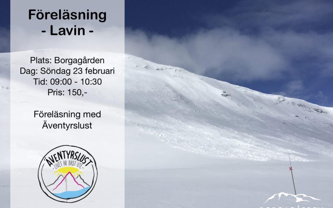 Lavin föreläsning 23 Feb.